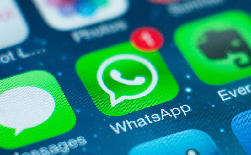WhatsApp-free